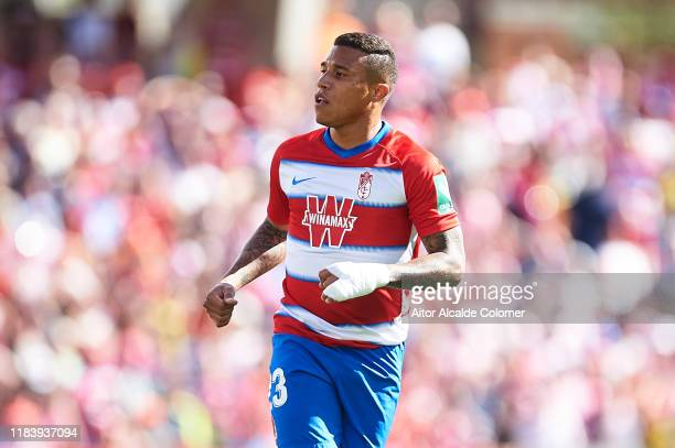 Darwin Machis of Granada CF looks on during the Liga match between Granada CF and Real Betis Balompie at on October 27, 2019 in Granada, Spain.