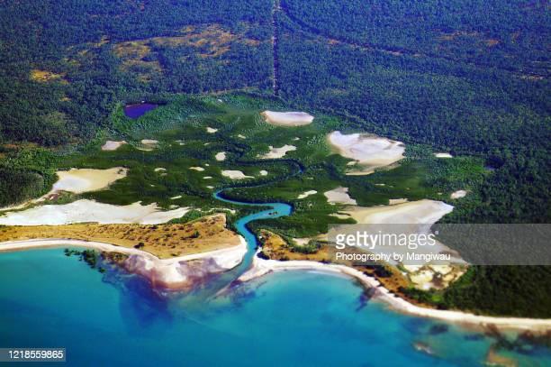darwin mangrove habitat and salt flats, northern territory - エアーズロック ストックフォトと画像