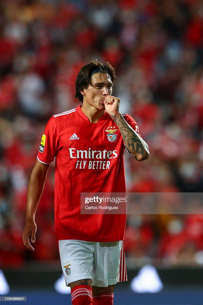 SL Benfica v Boavista FC - Liga Portugal Bwin : News Photo