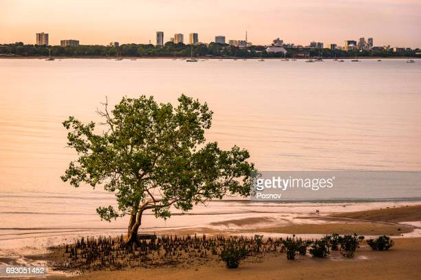Darwin Skyline from Dudly Point Lookout