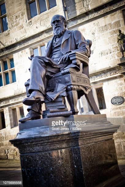 darwin statue, shrewsbury - darwin stock-fotos und bilder