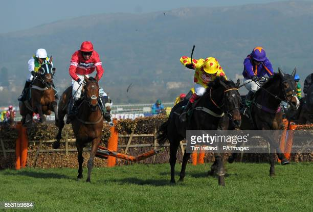 Daryl Jacob on Lac Fontana goes on to win the Vincent O'Brien handicap Hurdle Race during Cheltenham Gold Cup Day at Cheltenham Racecourse Cheltenham