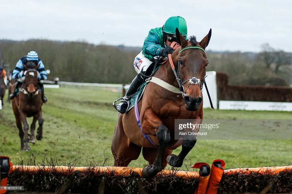 Daryl Jacob riding Delire D'Estruval clear the last to win The Follow Us On Twitter Novices' Hurdle Race at Towcester racecourse on February 14, 2018 in Towcester, England.