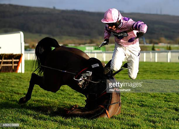 Daryl Jacob riding Saint Roque fall at the last in The Albert Bartlett Novices' Hurdle Race at Cheltenham racecourse on December 14 2013 in...