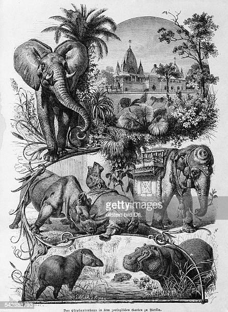 Das Elefantenhaus Elefantenpagode in dem ZoologischenGarten in BerlinZeichnung von G Mützel 1888