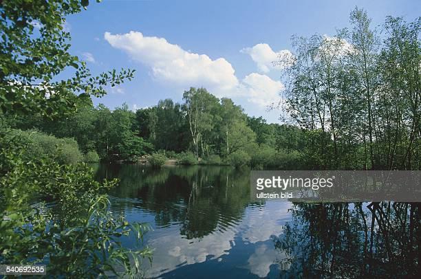 Das Eppendorfer Moor, auch Borsteler Moor genannt, ist das einzige Moor Deutschlands, das sich innerhalb einer Stadt befindet. Es wurde von 1990-99...