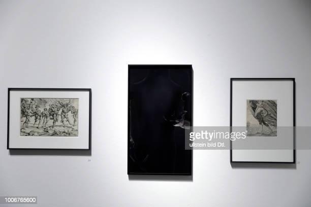 """Das Wallraf-Richartz-Museum erinnert mit der Ausstellung ?1917 ? In Erinnerung an Luise Straus-Ernst"""" vom 23. Juni bis 10. September 2017 an Luise..."""