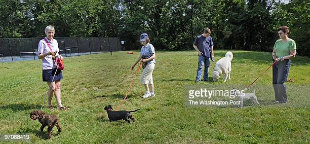June 20 2008 Slug medogpark Assignment # 202209 park developed to dog park 39th Newark St NW Photographer Gerald Martineau Photo shows dog owners who...