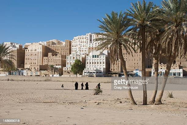 Date palm trees in wadi before tower houses of Old Shibam.