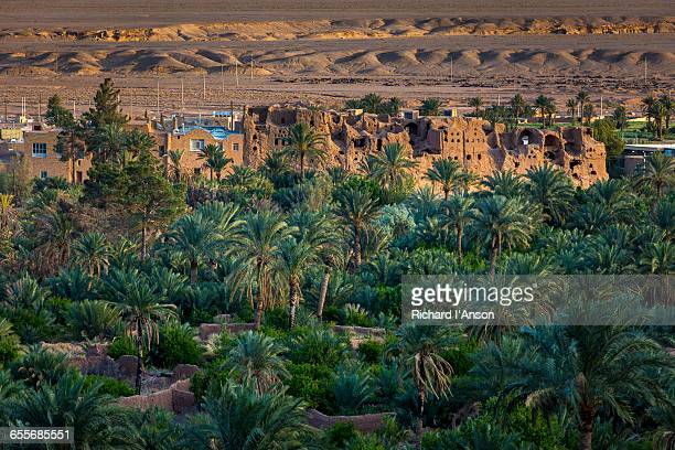 date palms & village - date palm tree stock pictures, royalty-free photos & images
