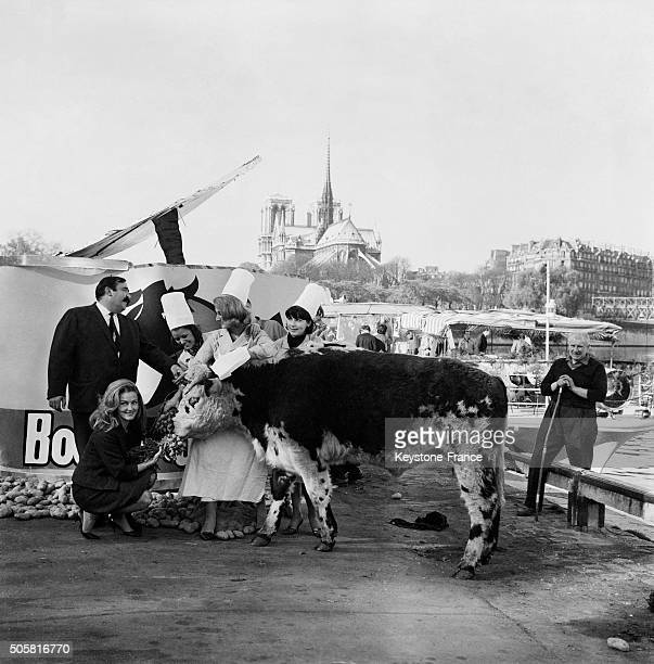 Daube Party For The Launching Of The Operation 'Boeuf En Daube' Advertisment Campaign With Musician Moustache And Actress Elga Andersen in Paris...