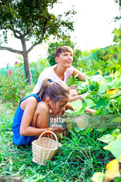 Daughter and mother enjoying in the vegetable garden