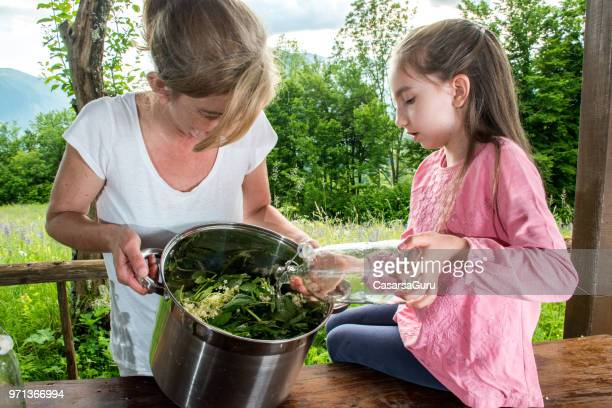 daughter helping mother preparing elderflower and mint syrup - mint plant family stock pictures, royalty-free photos & images