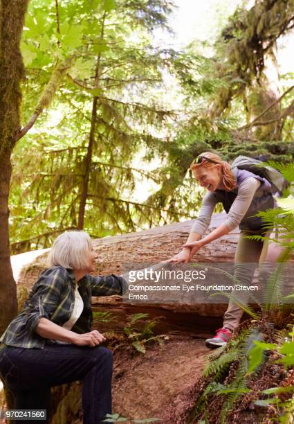 """daughter helping senior mother hiking in forest - """"compassionate eye"""" stock pictures, royalty-free photos & images"""