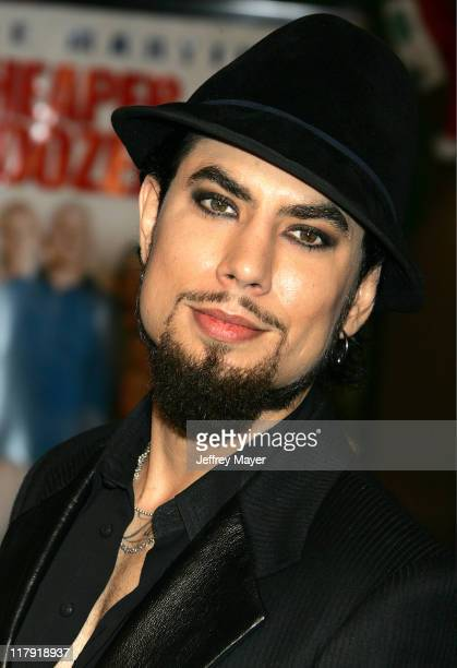Dave Navarro during 'Cheaper by the Dozen 2' Los Angeles Premiere Arrivals at Mann Village Theatre in Westwood California United States