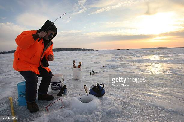 Dave Stecker catches a perch while test fishing an area of Gull Lake ahead of the Brainerd Jaycees Ice Fishing Extravaganza fishing tournament...