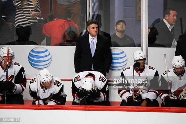 Dave Tippett head coach of the Arizona Coyotes stands behind the bench as the Coyotes take a 6 to 2 loss to the Chicago Blackhawks during the NHL...