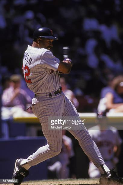 Dave Winfield of the Minnesota Twins bats during a baseball game against the New York Yankees on June 1 1993 at Yankee Stadium in New York New York