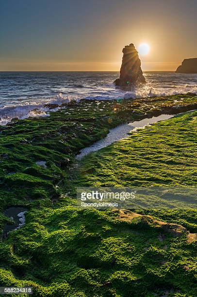 Davenport Beach Sunset near San Francisco