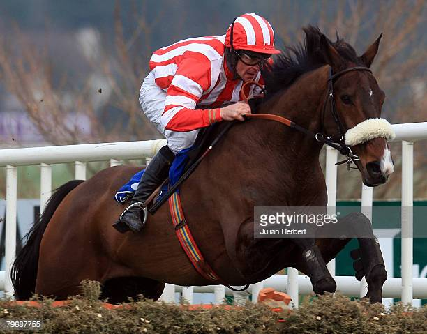 Davey Russell and Forpadydeplasterer clear the last flight to land The Deloitte Novice Hurdle Race run at Leopardstown Racecourse on February 10 in...