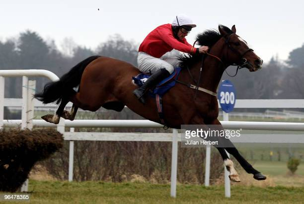 Davey Russell and Pittoni clear the last flight before going on to win The Spring Juvenile Hurdle Race run at Leopardstown Racecourse on February 7...