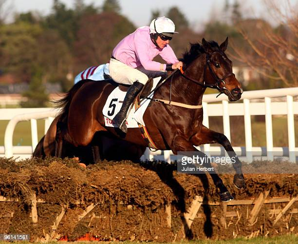 Davey Russell and Solwhit clear the last flight before landing The Toshiba Irish Champion Hurdle Race run at Leopardstown Racecourse on January 24...