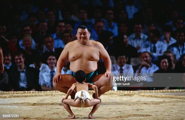 David and Goliath of Sumo