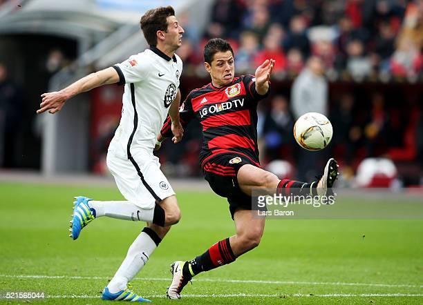 David Angel Abraham of Frankfurt challenges Chicharito of Leverkusen during the Bundesliga match between Bayer Leverkusen and Eintracht Frankfurt at...