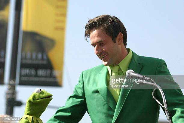 David Arquette and Kermit The Frog during Kermit The Frog Honored with a Star on the Hollywood Walk of Fame at Hollywood Blvd in Hollywood California...