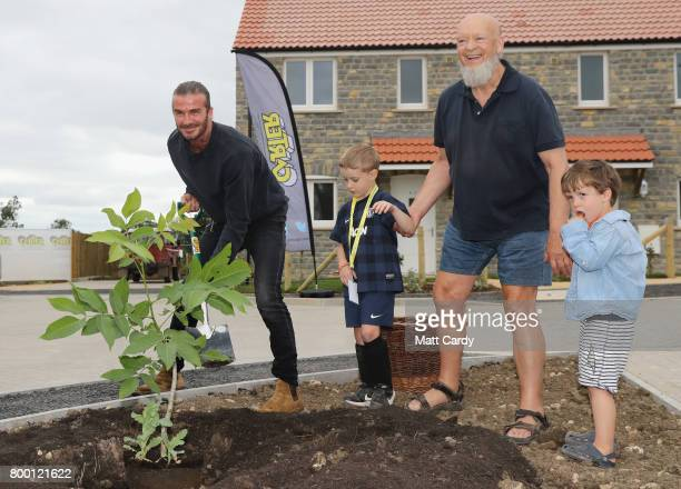 David Beckham poses alongside a newly planted tree with Glastonbury Festival founder Michael Eavis and Eavis' grandsons Noah and George as they open...
