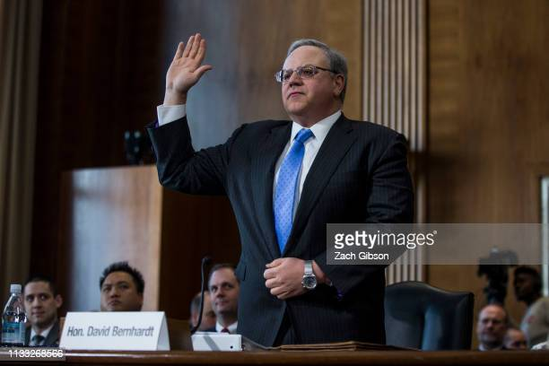 David Bernhardt President Donald Trump's nominee to be Interior Secretary is sworn in during a Senate Energy and Natural Resources Committee...