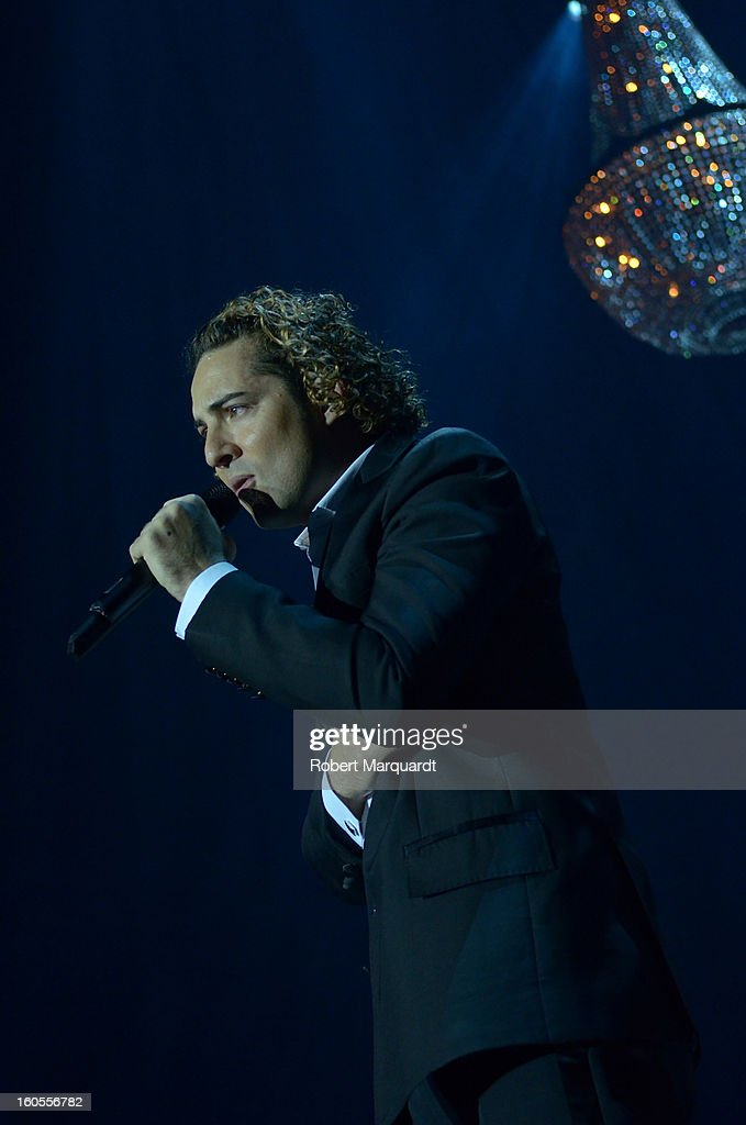 David Bisbal performs on stage at the Palau Sant Jordi on February 2, 2013 in Barcelona, Spain.