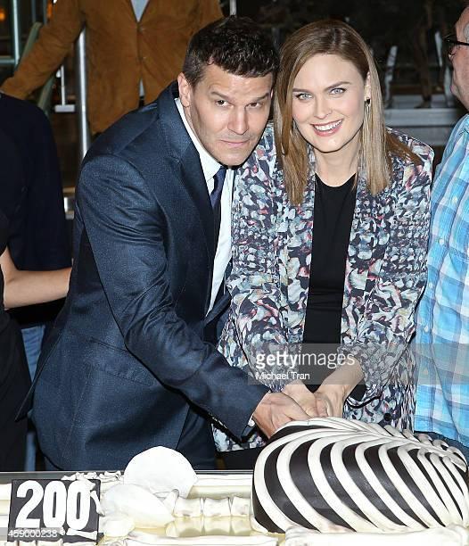 "David Boreanaz and Emily Deschanel attend the ""Bones"" 200th episode celebration held at Fox Studio Lot on November 14, 2014 in Century City,..."