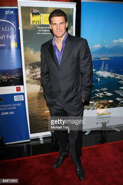 David Boreanaz arrives to the 4th Annual Los Angeles Italia Film Fashion and Art Festival opening night ceremony held at the Mann Chinese 6 Theaters...