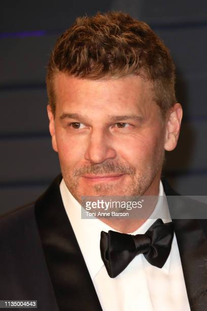David Boreanaz attends the 2019 Vanity Fair Oscar Party hosted by Radhika Jones at Wallis Annenberg Center for the Performing Arts on February 24...
