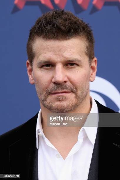 David Boreanaz attends the 53rd Academy of Country Music Awards at MGM Grand Garden Arena on April 15 2018 in Las Vegas Nevada