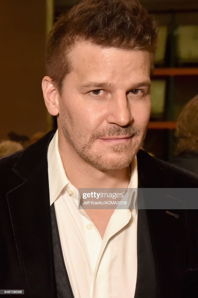 David Boreanaz attends the 53rd Academy of Country Music Awards at MGM Grand Garden Arena on April 15, 2018 in Las Vegas, Nevada.