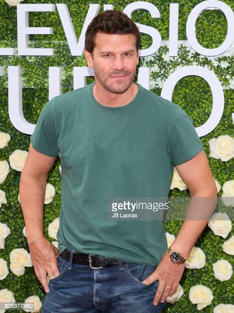 David Boreanaz attends the CBS Television Studios' Summer Soiree during the 2017 Summer TCA Tour on August 01 in Studio City California