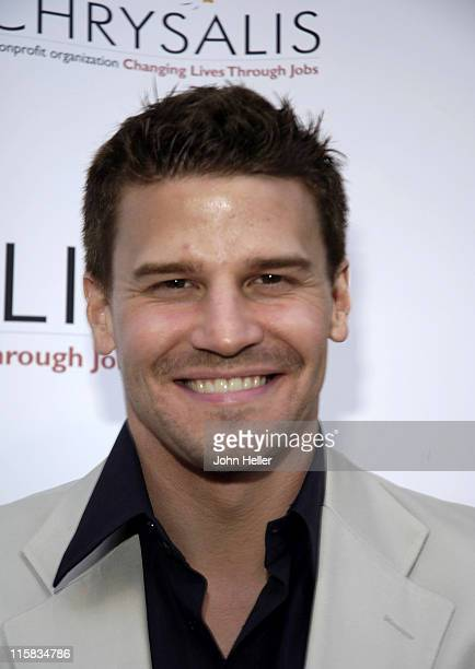 David Boreanaz during Chrysalis' Fourth Annual Butterfly Ball at Private Residence in Bel Air California United States