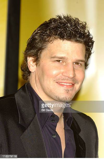 David Boreanaz during WB Television Network 2003 2004 Upfront Presentation at Sheraton Hotel in New York NY United States