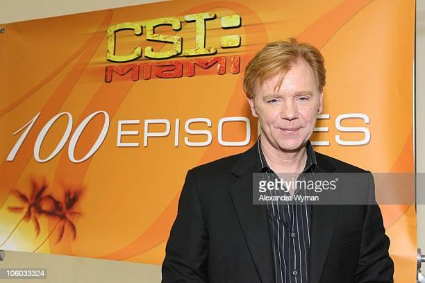 David Caruso during CSI Miami 100th Episode Celebration at Raleigh Studios in Manhattan Beach California United States