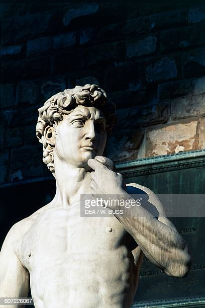David copy of the marble statue by Michelangelo 15011504 Piazza della Signoria Florence Tuscany Italy