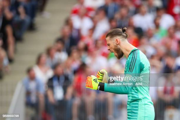 David De Gea of Spain celebrates after Sergey Ignashevich of Russia scored an own goal to make it 10 during the 2018 FIFA World Cup Russia Round of...