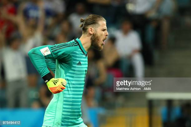 David De Gea of Spain celebrates his team's first goal during the 2018 FIFA World Cup Russia group B match between Portugal and Spain at Fisht...