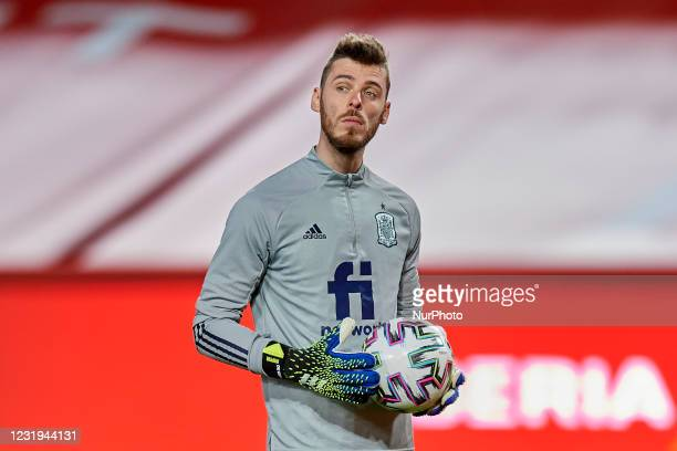 David de Gea of Spain during the warm-up before the FIFA World Cup 2022 Qatar qualifying match between Spain and Greece at Estadio Nuevo Los Carmenes...