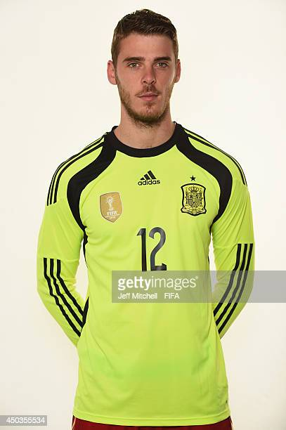 David De Gea of Spain poses during the official Fifa World Cup 2014 portrait session on June 9 2014 in Curitiba Brazil