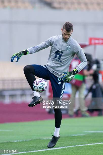 David de Gea of Spain warms up during the FIFA World Cup 2022 Qatar qualifying match between Spain and Kosovo at La Cartuja stadium on March 31, 2021...