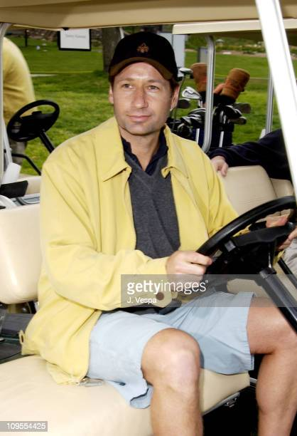 David Duchovny during 3rd Annual Project ALS Spring Benefit Celebrity Golf Tournament at The Lodge at Torrey Pines in La Jolla California United...