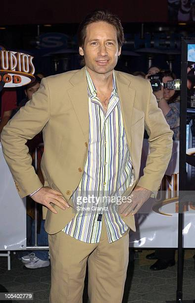David Duchovny during Connie and Carla World Premiere Arrivals at Universal Studios Cinema in Universal City California United States