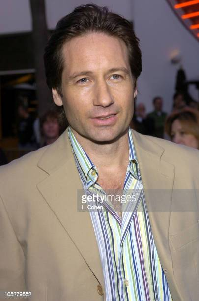 David Duchovny during Connie and Carla World Premiere Red Carpet at Universal Studios Cinema in Universal City California United States